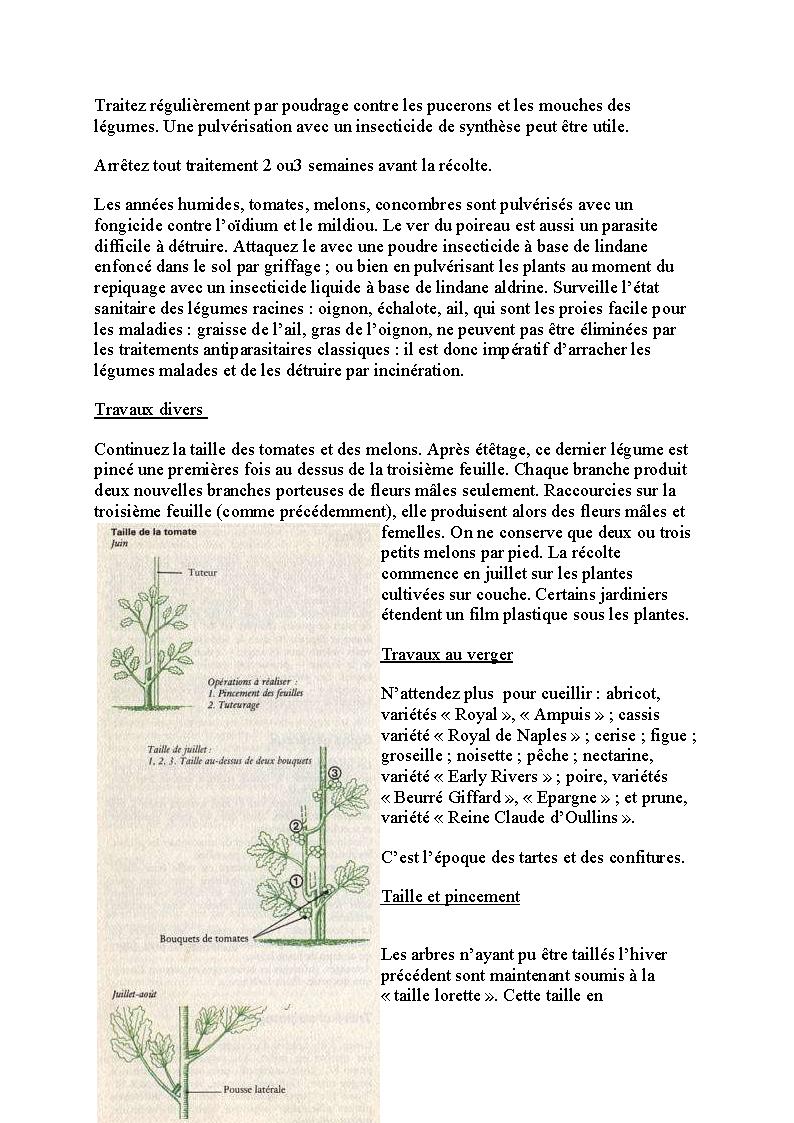 http://palife.free.fr/up/Les%20travaux%20de%20juillet_Page_03.png