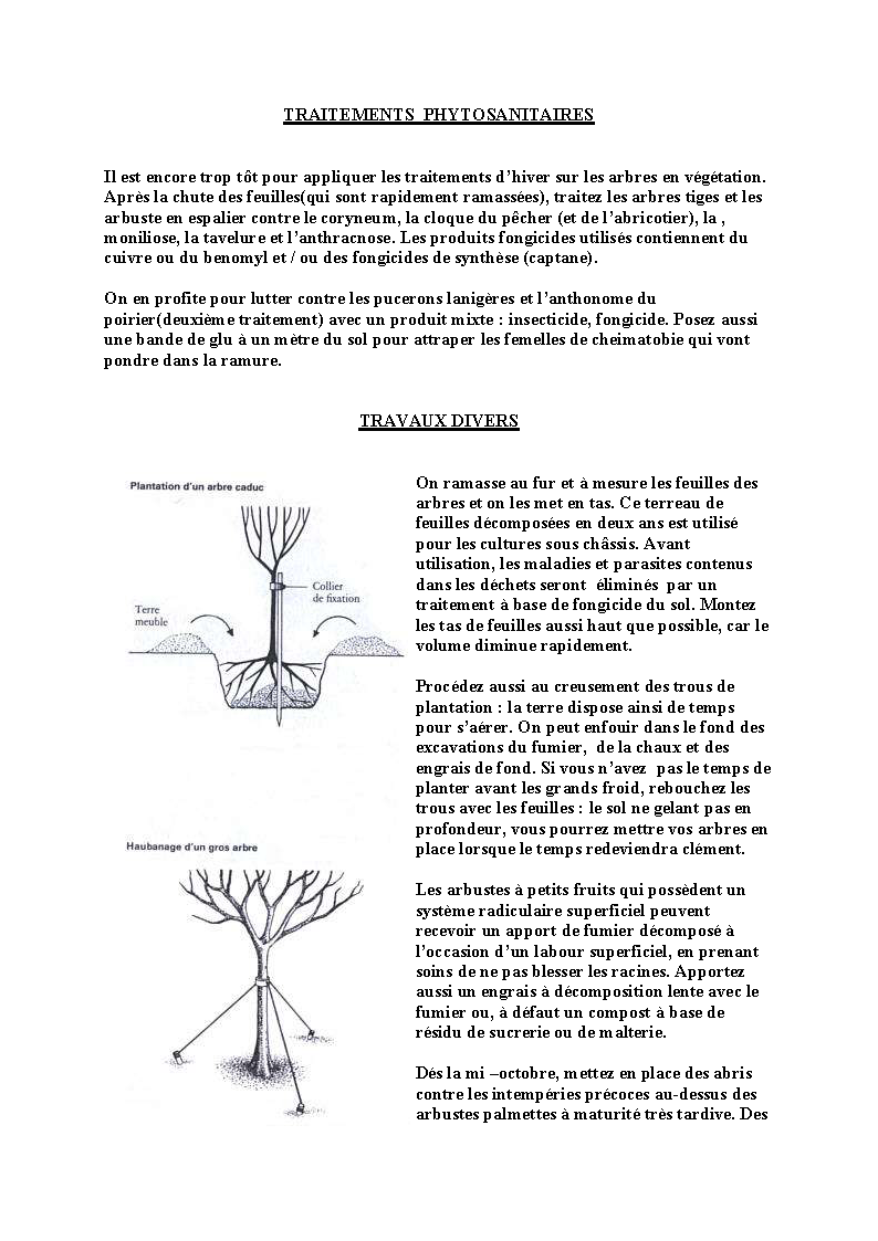 http://palife.free.fr/up/Travaux%20d%27octobre_Page_05.png
