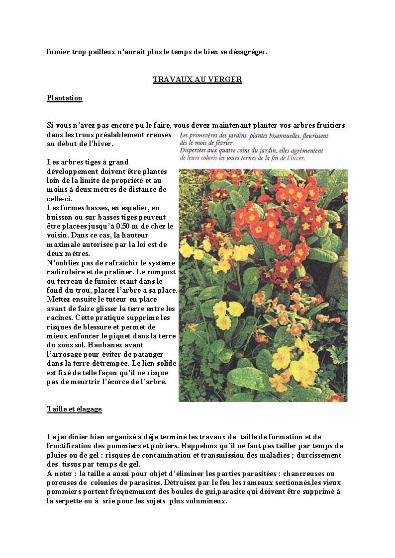 http://palife.free.fr/up/Travaux%20de%20f%e9vrier_Page_04.png