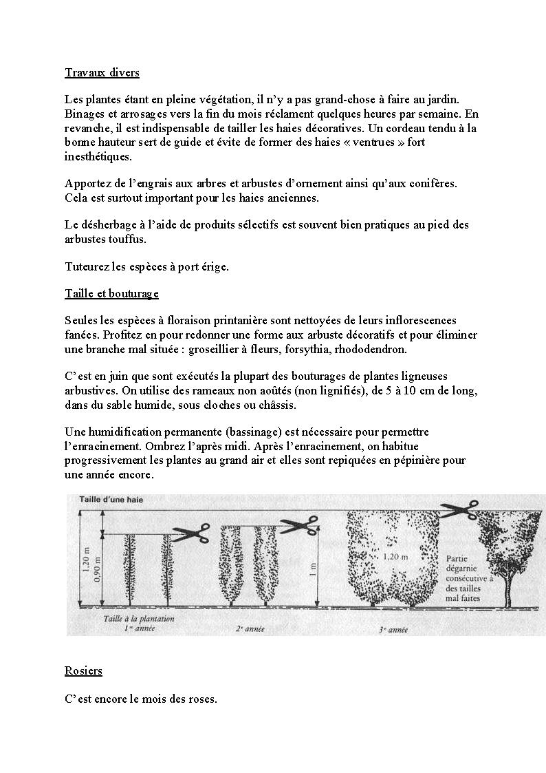 http://palife.free.fr/up/Travaux%20de%20juin_Page_09.png